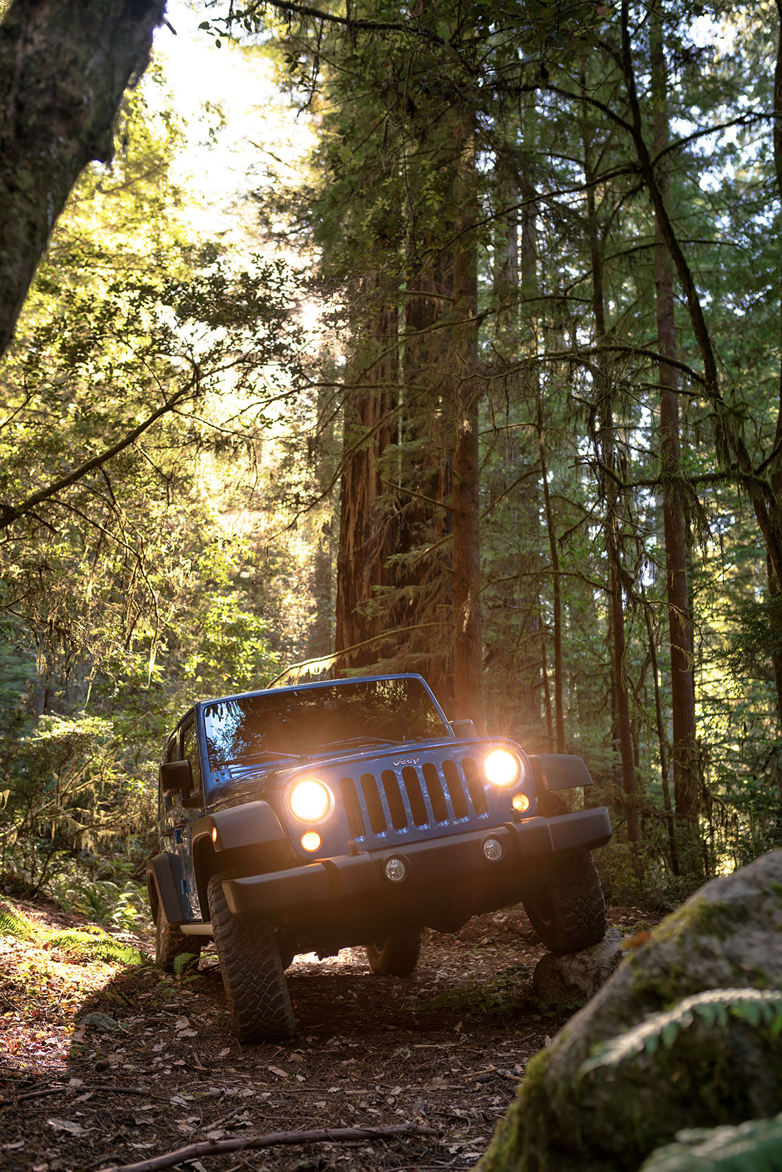 jeep_wrangler_red_woods